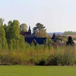 Melicocq